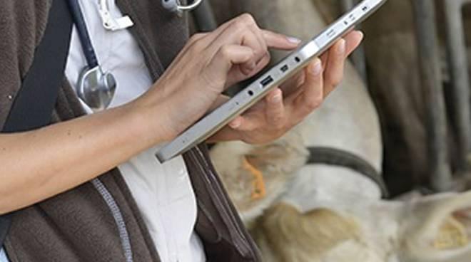 Ricetta Elettronica Veterinaria In Parafarmacia.La Ricetta Veterinaria Elettronica Rve Come Funziona Obiettivi E Criticita Agenda Digitale